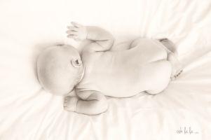 studio photography of newborn baby