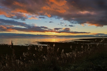 winter sunset over Newport Wetlands
