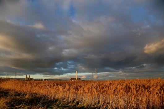 Newport Wetlands