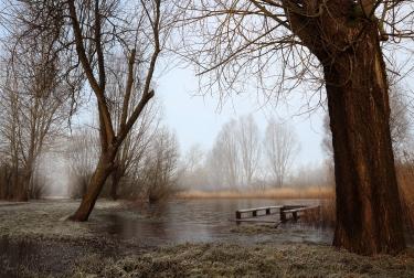 caldicot-frozen-foggy-floods