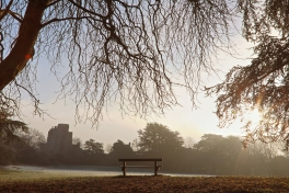 fog-caldicot-castle-frost