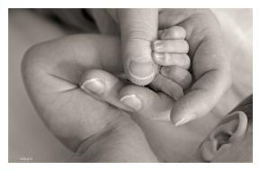 black-and-white-newborn-babys-hand