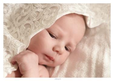 portrait-baby