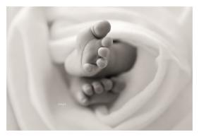 newborn-photography-forest-of-dean