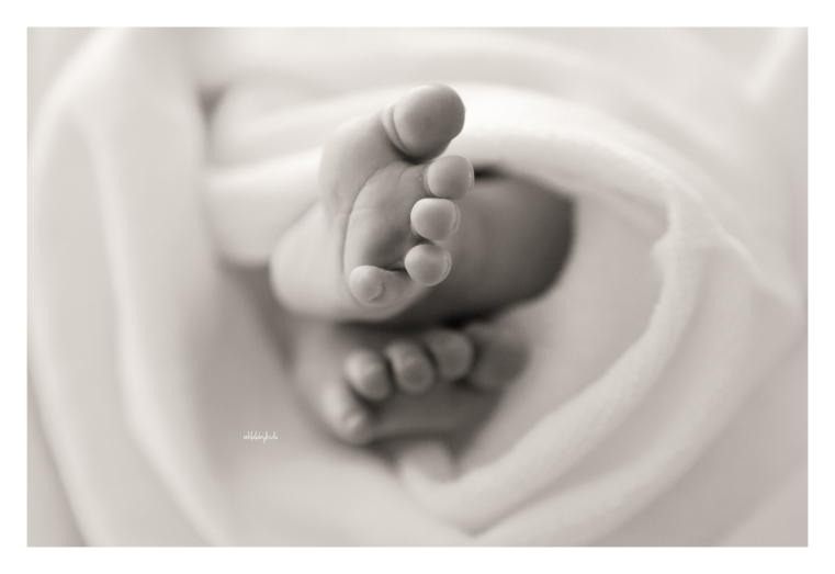 newborn-photography-forest-of-dean