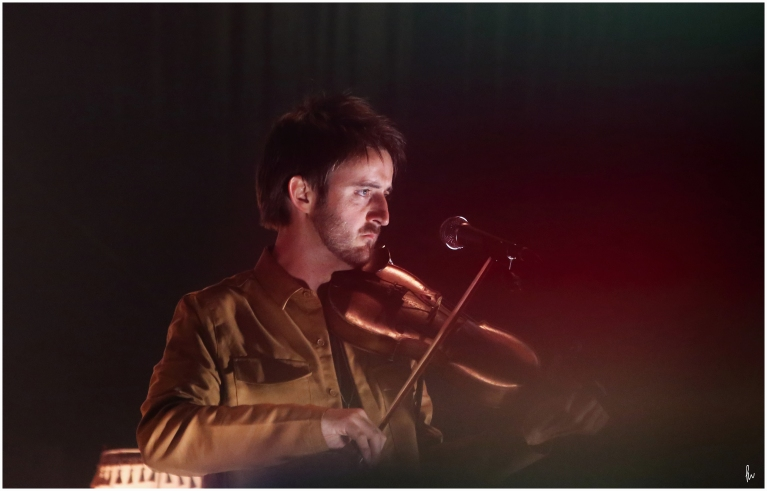 photograph of fiddle player