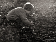 black and white photo of child in autumn leaves