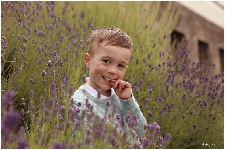 little boy sat in lavender