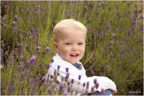 portrait of little girl in the lavender