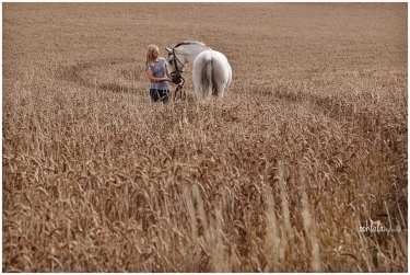 portrait of girl with a horse in a corn field